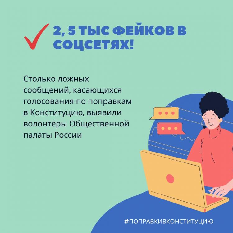 Волонтеры Общественной палаты выявили более 2,5 тыс. ложных сообщений о голосовании по поправкам в Конституцию