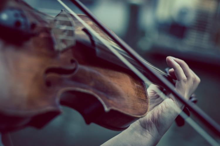 «Сад гармонии»: в клубе-галерее «Крылатский орнамент» сыграют на клавесине и скрипке